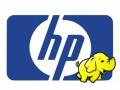 HP_Hadoop