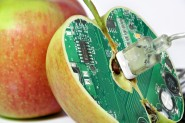 apple_manzana-interior-chip