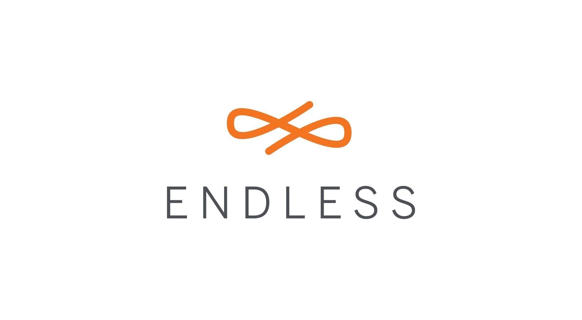 Endless logo