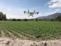 Agrodrone drones