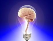 Inteligente1